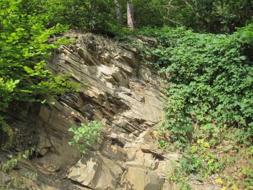 Grauwacke - eins der häufigeren Gesteine hier. Das Erläuterungsschild erzählt von uralten Meeren, deren Sedimente sich schichtweise ablagerten und später schräg gestellt wurden. Der Berg ist also Meeresgrund.