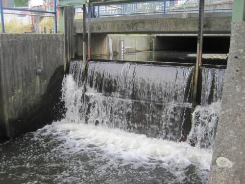 Über das Karnappwehr fliesst eine Menge Wasser - die könnte statt dessen den Fischpass verbessern.