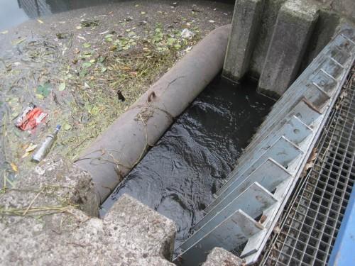 """Und die schon in der Abwasser-Vergangenheit ihre Funktion nicht erfüllende Ableitung von gutem Seevewasser in den Ziegelwiesenkanal muss endlich ein Ende haben. """"Fließgewässer spült Stillgewässer"""" ist und bleibt ein Irrweg."""