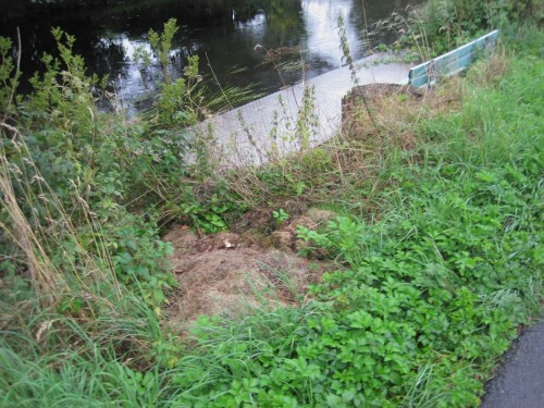 Rasenschnitt hat am Gewässerufer nun gar nichts verloren.