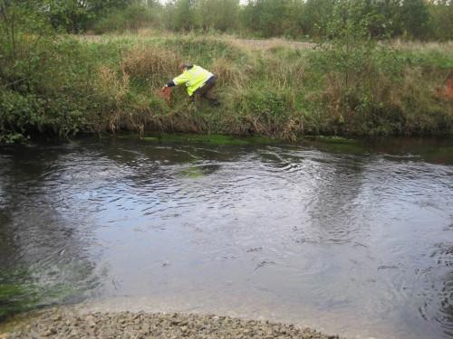 Dazu werden - Fahrrecht wurde nur für diese Uferseite vereinbart - am anderen Ufer Markierungen angebracht, für den Fall, dass die Ökologische Baubegleitung einmal nicht vor Ort ist.