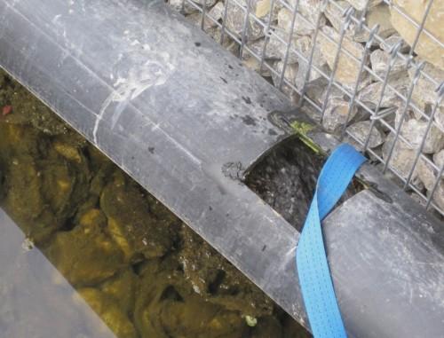 Im Rohr sichtbar: das Ganze wird bach-gespeist. Spätestens hier verliert also seine Charakteristik - vielleicht gibt es ja eine Alternative wie es anderswo üblich ist: Speisen der Stillgewässer nur bei Hochwasser, Umlauf des Bachs als Bach.