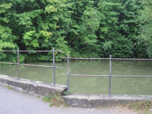 Der Blick in den Mühlenteich zeigt das Dilemma des aufgestauten Bachs - Alterung des stehenden Gewässers bringt Verschlechterung der Wasserqualität mit sich. Auf Überhitzung im Sommer, Unterkühlung im Winter und Durchgängigkeitsproblem soll hier nicht eingegangen werden.
