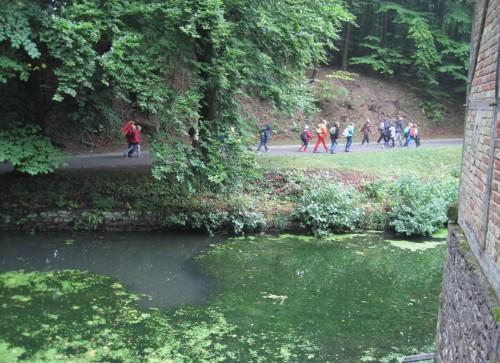 Das ist natürlich alles sehr informativ und daher gut besucht - Schulklasse hinter hochnährstoffreichem Teich, voll mit fädigen Grünalgen.