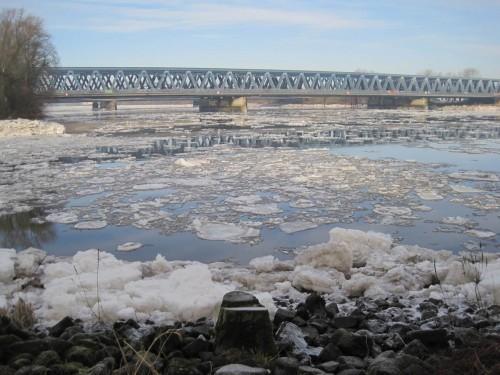 Süderelbe mit Eisschollen, Blick von Pionierinsel auf die Bahnbrücke.