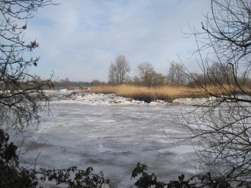 Naturschutzgebiet Schweenssand, Blick von Pionierinsel nach Osten.