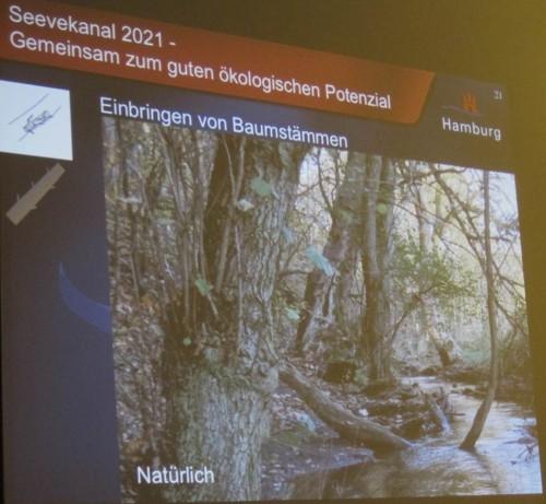 Naturnähe ist das Ziel heutiger Gewässerverbesserungen.