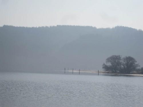 Am anderen Ufer liegen die breiten, flach überschwemmten Ländereien - hoffentlich hält der Wasserstand, dass die Laichwiesen auch 2014 millionenfach Jungfisch produzieren.