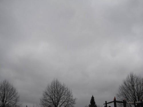 Oha, dieser Morgen ähnelt dem gestrigen gar nicht. Das angesagte Sturmtief zieht durch.