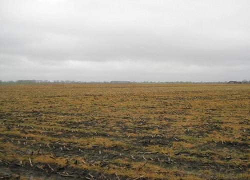 Bis zum Horizont ... Verbietet endlich diese flächenhaften Boden-, Wasser-, Tier- und Pflanzenvergiftungen!