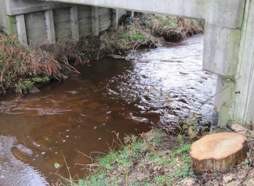 Dieses Gefälle wird in regelmäßigen Abständen durch z.T. rampenähnliche Sohlgleiten aus Wasserbaustein aufgefangen.