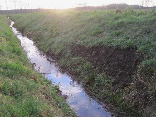 Regelhaft gehören verletzte Uferböschungen zum Bild harter Unterhaltung dazu.