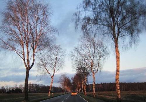 Im tief stehenden Abendlicht fahren wir zum Brunsbrockmüllerhaus.