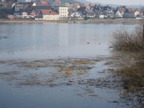 Blick über die Laichwiesen - Herzhausen liegt im Sonnenschein. Dort werde ich gleich den Uferweg entlanglaufen.
