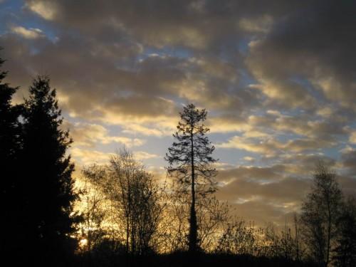 Schon ein Bisschen her - Töster Morgen am 9. April, es geht Richtung Elbe in den Frühlingsurlaub.