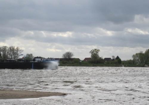 Auf dem Rückweg sehen wir ein seltenes Binnenschiff, Gischt am Bug. Wieso soll die Mittlere Elbe entnatürlicht werden, wenn schon hier, vor dem Elbeseitenkanal, (fast) keine (subventionierte ! !) Schifffahrt stattfindet?!