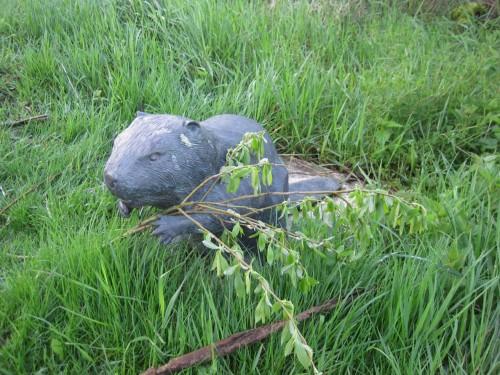 Wir lernen, nicht jeder Baum wird vom Biber gefällt. Die Skulptur hat frischen Weidengrün erhalten.