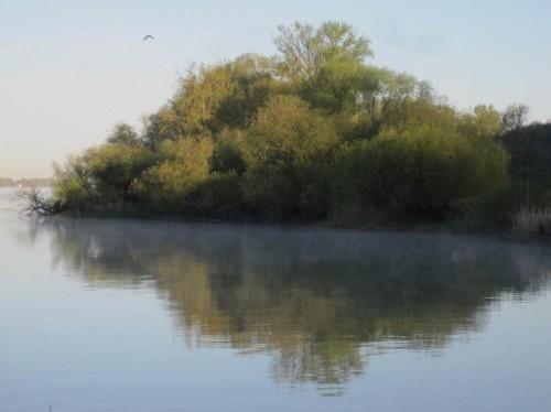 Morgensonne am Reisetag - so behalten wir die Elbe gern in Erinnerung.