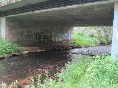 Erster Stopp: die luxuriöse Otter-Berme. Fischotter sind anspruchsvoll, wollen Brücken nur trockenen Fußes queren. Oben hiesse das: Opfer des Autoverkehrs! - Man erkennt, auch Künstler passieren hier.