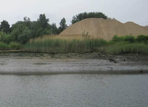 Mitten im Hafen: Sukzesson Sand-/Schlickwatt - ist das eine Düne? Nein, wohl ein Bausandlager ...