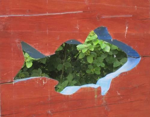 Der Blick durch Fisch-Silhouetten bietet einen anderen Landschaftseindruck als gewöhnlich.