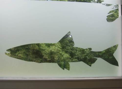 Landschaft durch Fisch-Silhouetten sieht man übrigens auch von innen nach draussen - hier durch den Lachsverwandten Stint.
