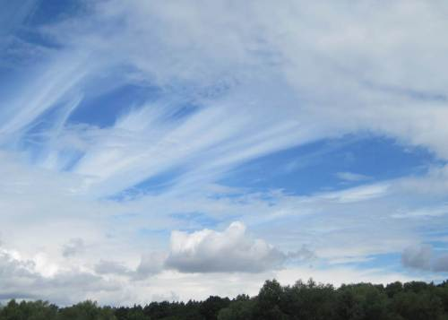 Der Himmel ist heute wirklich interessant. Von freiem Blau über hohe Zirren bis zu jagenden Wolken und schwarzen Fronten ist alles vertreten.