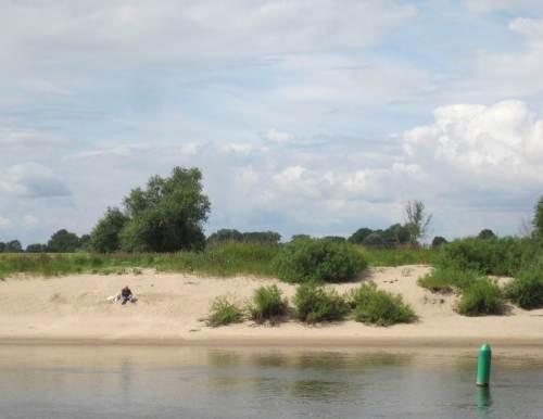 """""""Eigener"""" Sandstrand - die Elbe beim Hundespaziergang geniessen (darf der das?)."""