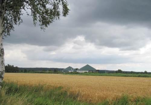 """""""Heizen mit Weizen!"""" - Biogasanlagen-Boom allerorten."""