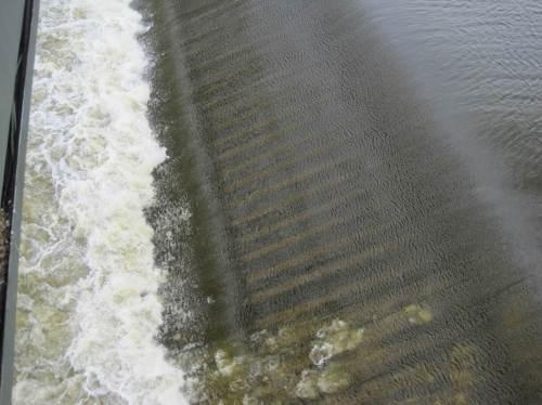 Es herrscht gerade so geringer Abfluss in der Elbe, s. dünne Wasserschicht über dieser Wehrklappe, dass problemlos Wartungsarbeiten durchgeführt werden können. Einige Wehrfelder sind ausser Betrieb.