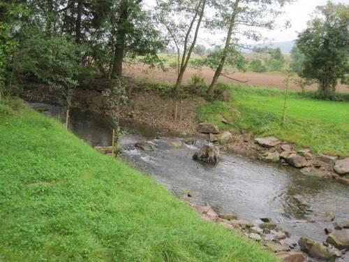 Die Lenne, hier bei Niedrigwasser querab Buchhagen, ist von ihrer Struktur her ein Forellenbach.