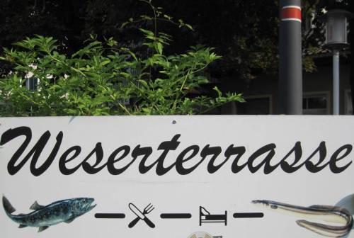 Immerhin ist - neben dem Aal - die Forelle auch für den Laien schon in der Werbung von Gaststätten zu finden.
