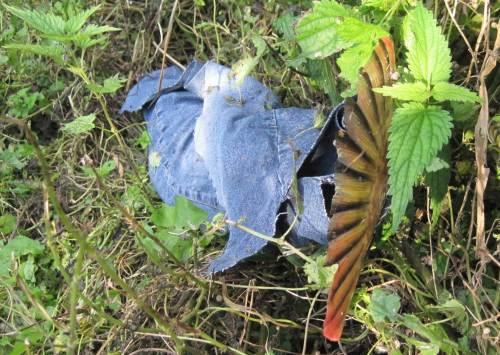 Herbstfarben rot-gelb-schwarz-blau-grün in der Weseraue. Hinweis: das Blau ist ein Jeans-Bein eines 1,80 m Erwachsenen. Dazu folgt später ein spezieller Blog-Beitrag.