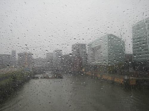 Perspektive etwa wie beim ersten, dem Sonnenbild; ich freue mich zweimal - vor allem: WIR BRAUCHEN DAS WASSER und: beim Einsteigen in HH und beim Aussteigen zu Hause regnete es weniger, so dass es ein gemütlicher Fußweg wurde.
