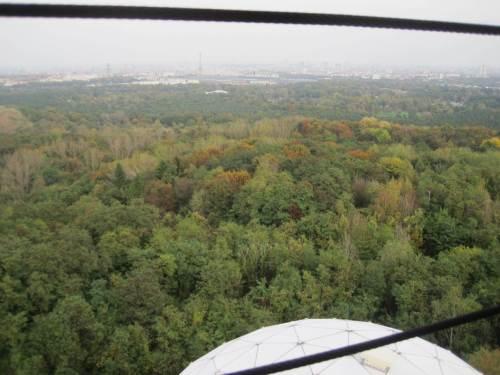 Grün ist der Grunewald - mit startenden Herbstfarben.