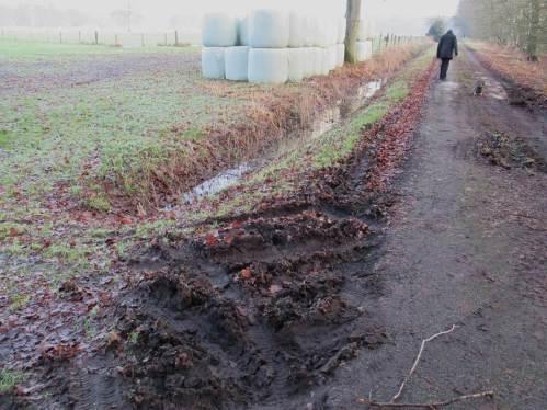 """Spuren im - nein, nicht Sand! - ... """"Schlagkräftige Landwirtschaft"""" ist nicht zu übersehen."""