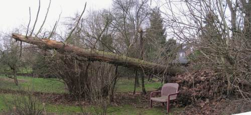 Insgesamt sieht das nun so aus, schwebendes Totholz.