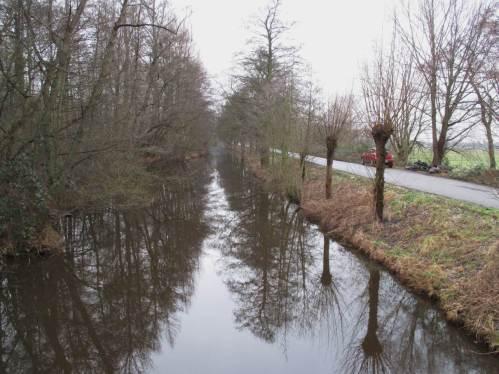 Erlen, Eschen und Weiden säumen weite Strecken des Seevekanals auf Hamburger Gebiet.