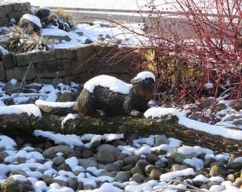 Stopp in der Anfahrt: an den mit Mütze und Schneedecke gezierten (Verkehrs-)Insel-Ottern in Otter wollte ich nicht einfach vorbeifahren.