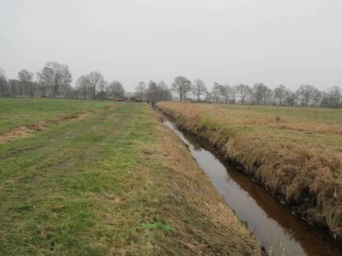 Zwar muss der Jilsbach wegen einer im Naturschutzgebiet weiter intensiv genutzten Nachbarfläche in seinem kanalartigen Bett bleiben, aber das Bachleben soll zurückkehren.