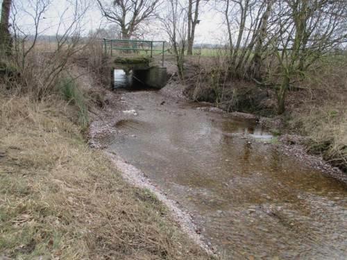 """Eigentlich sollte hier eine abwärts vom Hochwasserkolken liegende Rausche mit Einengung den Abriss unter der Brücke auffangen, damit Fische und Wirbellose """"einsteigen"""" können."""