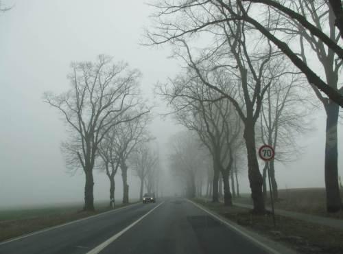 Wenige 100 Meter entfernt - dichter Nebel. Hier wird gar kein Energienetz zusammenbrechen! Später sah es bei uns im Umfeld überall so aus ...