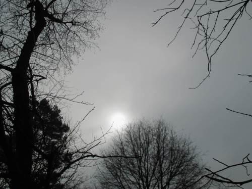Die startende Sonnenfinsternis habe ich bei einer Gewässerbegehung dann doch noch sehen - allerdings nicht fotografieren können. 3/4 Sonne überstrahlen das eine vom Mond verdeckte Viertel.