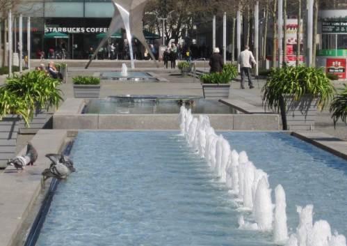 Die Tauben zeigen uns: Wasser in der Stadt ist wichtig - zum Treffen, Trinken, Baden.