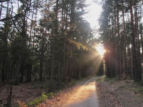 Gut angekommen, jetzt schnell per Rad an den Weststrand, Sonne anbeten.