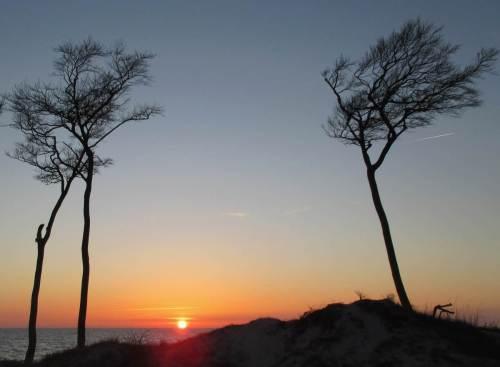 """Zwischen den bekannten """"Windflüchtern"""" versinkt die Sonne am Meereshorizont."""