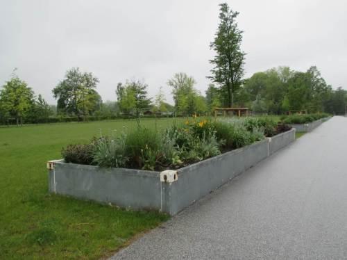 Ziemlich kahl und unterhaltungsintensiv - zentraler Zugangsbereich, der zu Zeiten der IGS eine Vielzahl bunter Garten- und Umweltthemen bot.