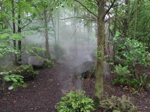 Auch der Nebelwald nebelt noch.