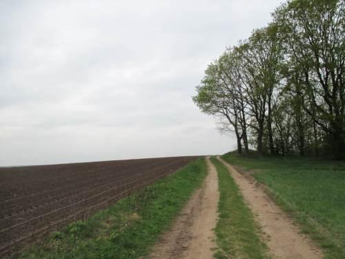 """Fassungslos vorm Horizont - fast """"on top of the world"""", zwischen Elbe- und Weser-Einzugsgebiet."""