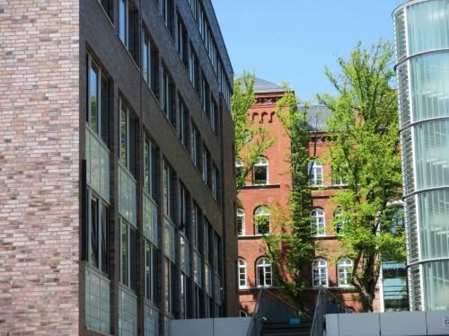 Blick vom TUHH-Campus auf das Gebäude Schwarzenbergstraße - alt und neu bieten interessante Kulissen.